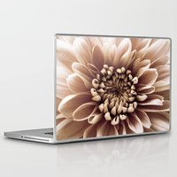 shabby chic Laptop & iPad Skins featuring Shabby Chic Flower by Dawn OConnor