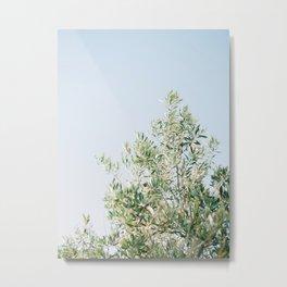 The olive tree | Italy fine art travel photography | Ostuni art Metal Print