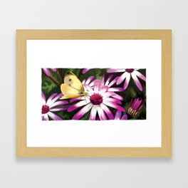 ChouChou.5 Framed Art Print