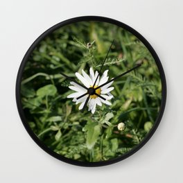 lonely flower, color photograph Wall Clock