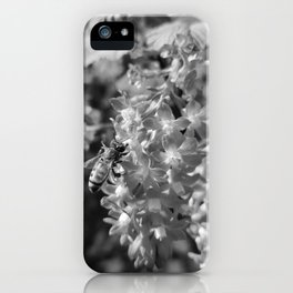 Bee and Blood Currant Ribes Sanguineum bw iPhone Case