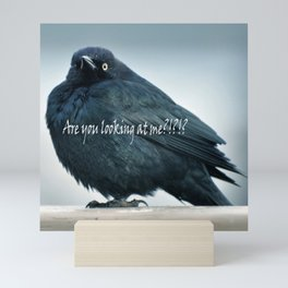 Are You Looking At Me???? Mini Art Print