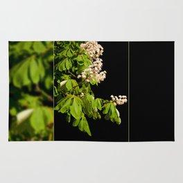 blooming Aesculus tree on black Rug