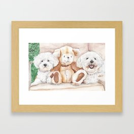 Two Bichons and A Friend Framed Art Print