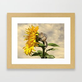 Waiting for the Sunflower Framed Art Print