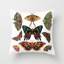 Moth Wings III Throw Pillow
