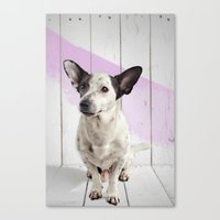 puppy Canvas Prints featuring puppy by Michael Mann