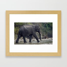Good Morning India Framed Art Print