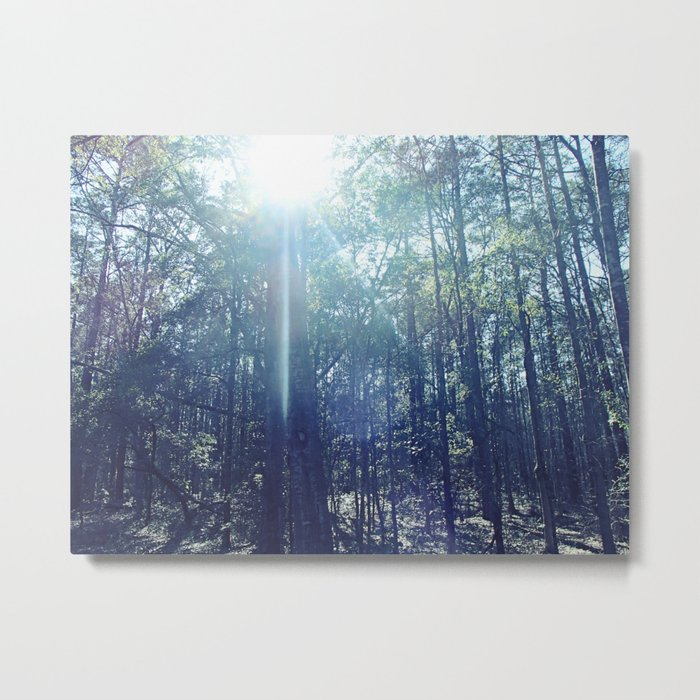 In the Light Metal Print