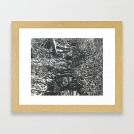 Small Creek Framed Art Print