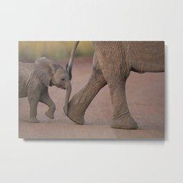 Elephant Calf photo, baby elephant photo Metal Print