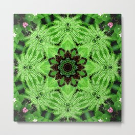 Fern and friends mandala - Maidenhair, Adiantum 567 kal 25 Metal Print