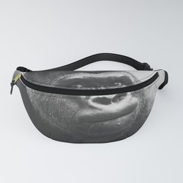 The Look Of A Silver Back Fanny Pack