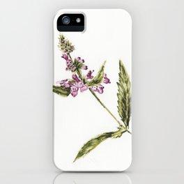 Lamium iPhone Case