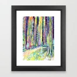 Redwoods Road Trip Framed Art Print