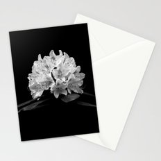 Rhododendron In Black And White Stationery Cards