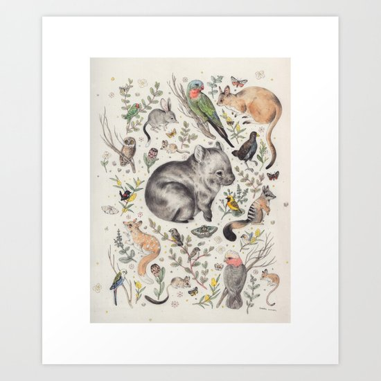 Australian Native Animals and Birds Art Print