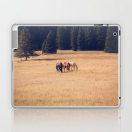 Montana Collection - Horses on the Ranch Laptop & iPad Skin