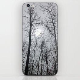Bare Trees  series (2) iPhone Skin