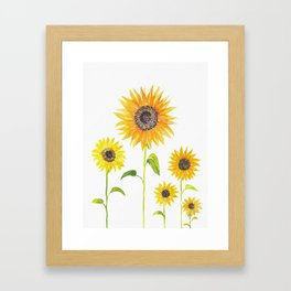 Sunflowers Watercolor Painting Framed Art Print