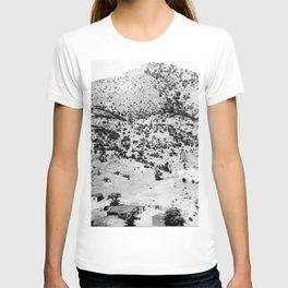 Santa Cruz County, Arizona. 1909 T-shirt