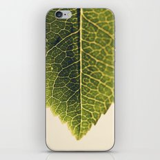 green leaf abstract iPhone & iPod Skin
