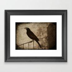 Blackbird 2 Framed Art Print