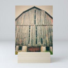 Weathered Mini Art Print