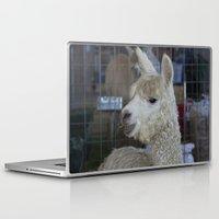 alpaca Laptop & iPad Skins featuring White Alpaca by Deborah Janke