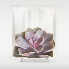 Purple Succulent Shower Curtain
