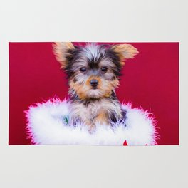 Tiny Yorkshire Terrier Puppy in a Green Basket Surrounded by Christmas Poinsettia Rug