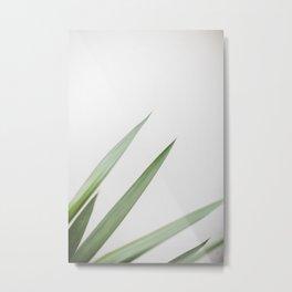 Plant Metal Print