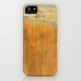 Along the trail - Old Rag, Shenandoah National Park iPhone Case