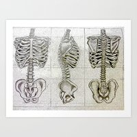 bones Art Prints featuring Bones by Kristen Willsher