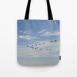 Untitled from Rat Beach series Tote Bag
