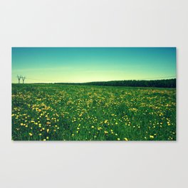 field landscape Canvas Print