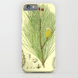 Botanical Pine Branch iPhone Case