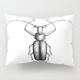 Beetle hand-drawn in the style of vintage etchings Pillow Sham