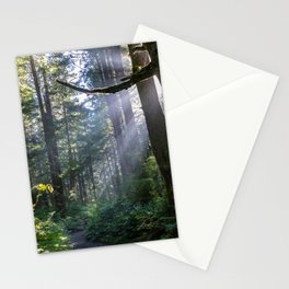 Rain Forest at La Push Stationery Cards