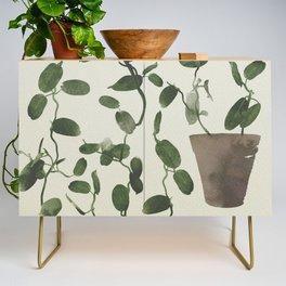 Hoya Carnosa / Porcelainflower Credenza