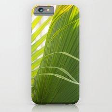Summer, Forever iPhone 6s Slim Case