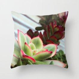 Succulent Bloom Throw Pillow