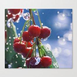 Summer rain on cherries Canvas Print