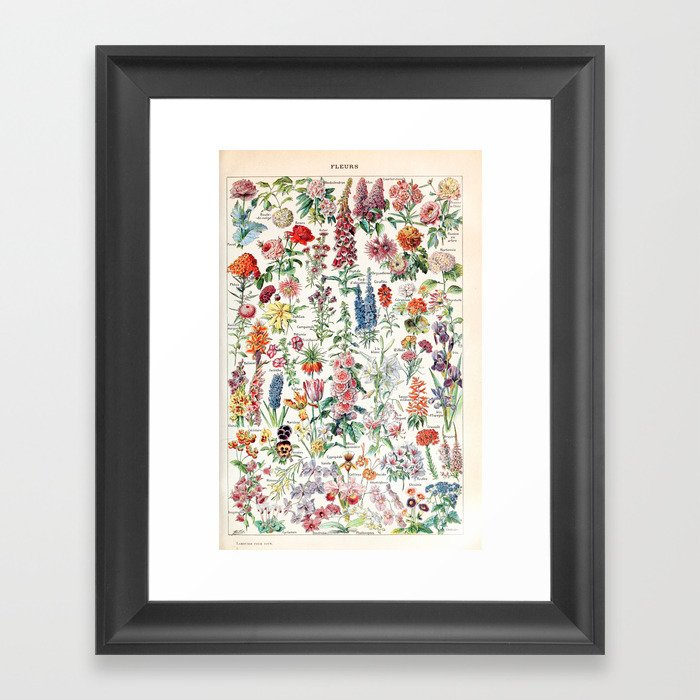 Adolphe Millot - Fleurs pour tous - French vintage poster Gerahmter Kunstdruck
