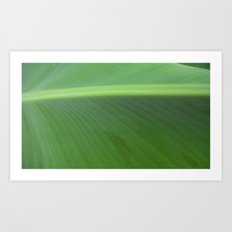 Into the Green Wide Open Art Print