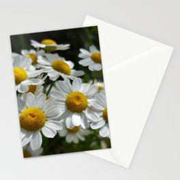 Palpable Happiness Stationery Cards