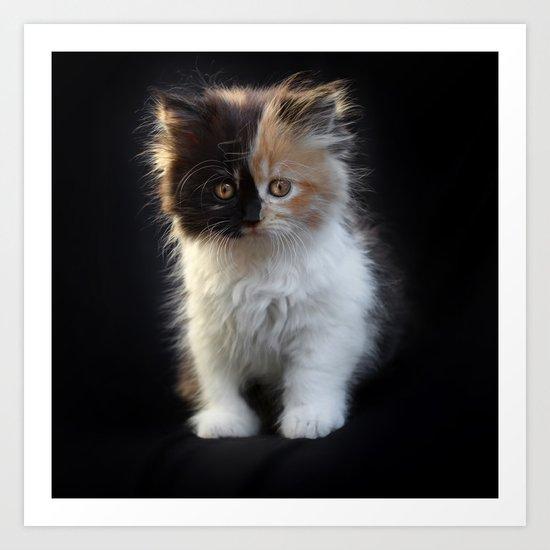 Cutest Kitten Ever Art Print