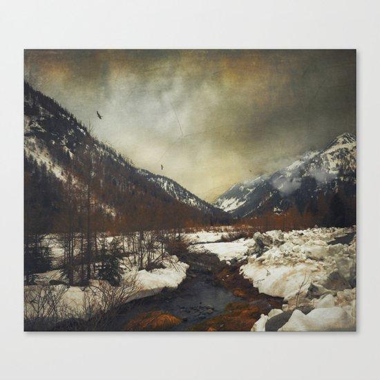 Wild Winter Valley Canvas Print