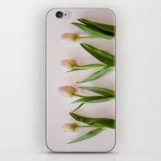 Four Tulips iPhone & iPod Skin