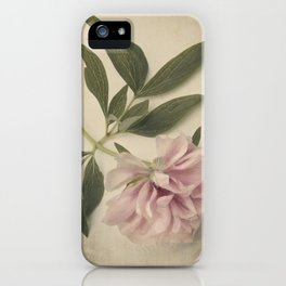 Scents of Spring - Pink Peony ii iPhone Case